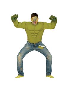 Déguisement héros vert homme